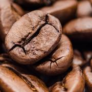 Toda caffè in grani